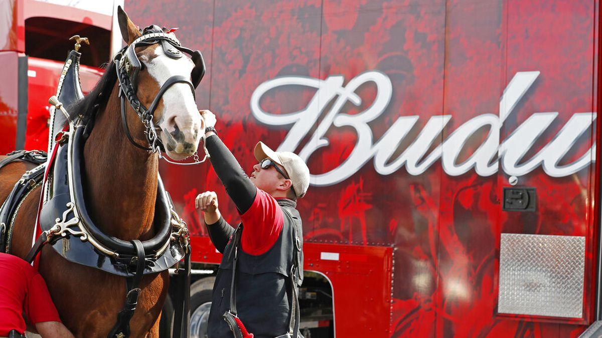 Budweiser to forgo Super Bowl ads, donate money to coronavirus fight