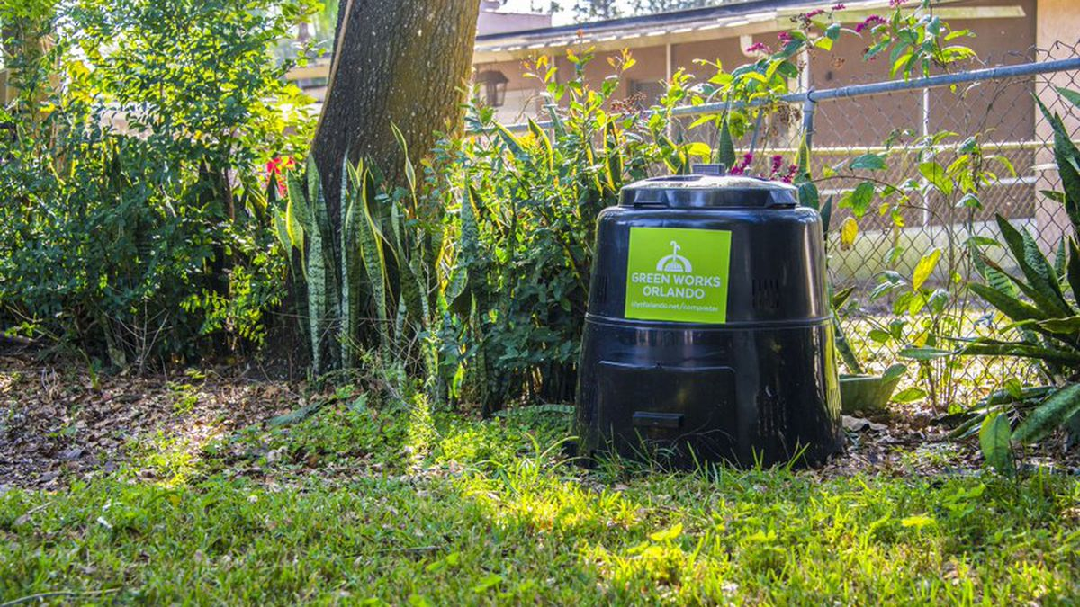 Go out on a limb: Here's how Orlando residents can receive free trees, composters