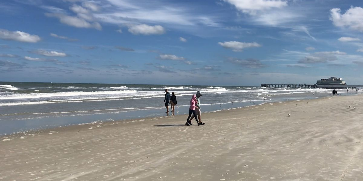 No butts on the beach: Proposed law would ban smoking on Florida beaches