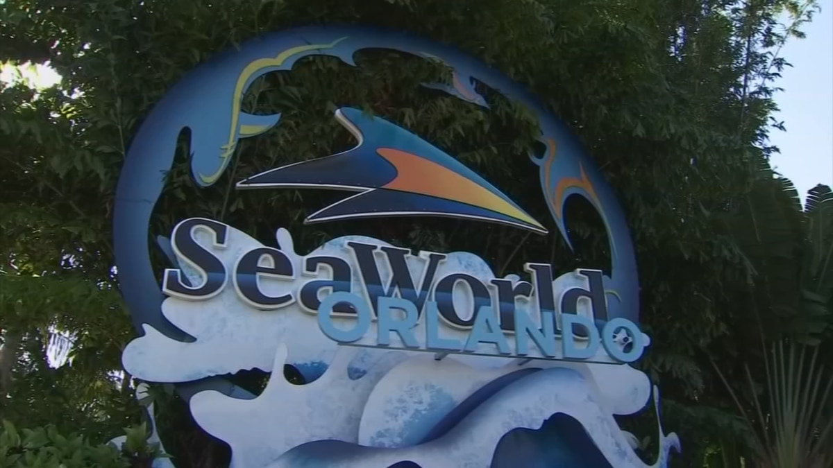 'Inside Look': SeaWorld Orlando to give guests behind-the-scenes look at animal care facilities