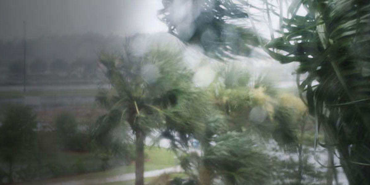 Hurricane Dorian: Sept. 2