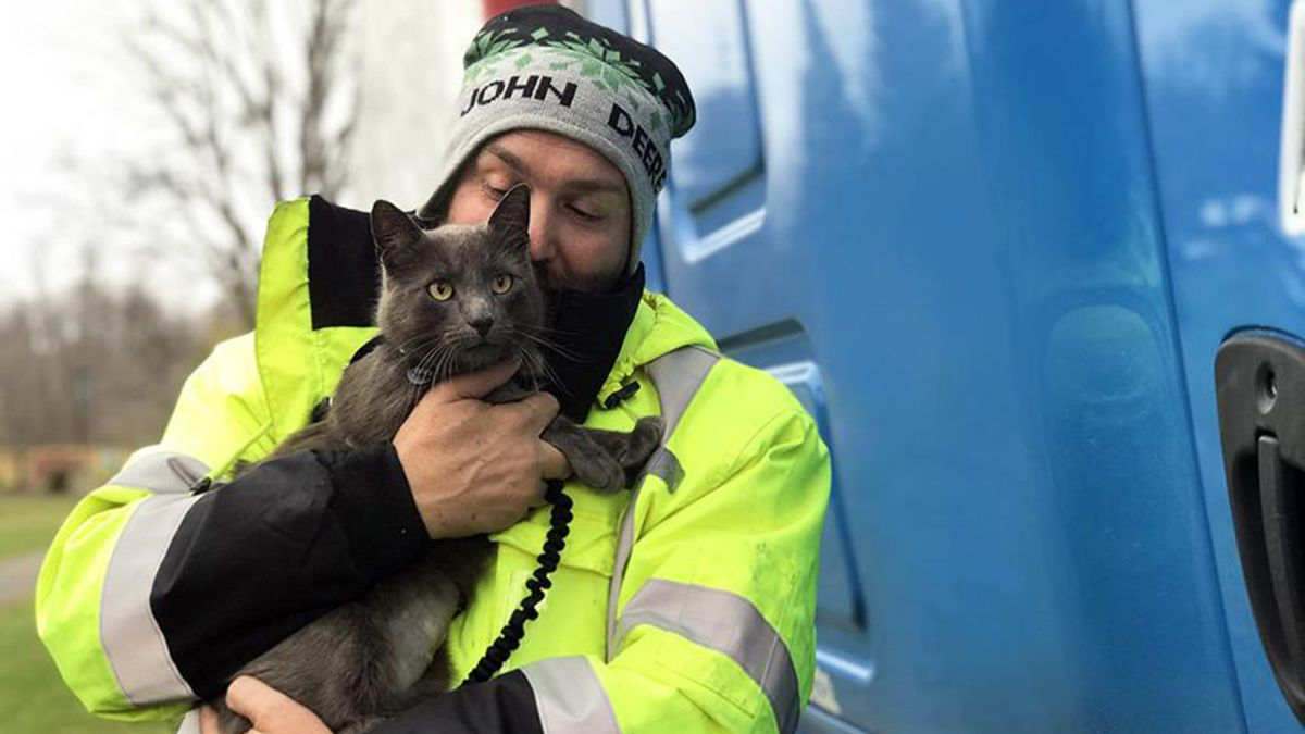 Georgia truck driver reunited with his cat after it was lost in Ohio