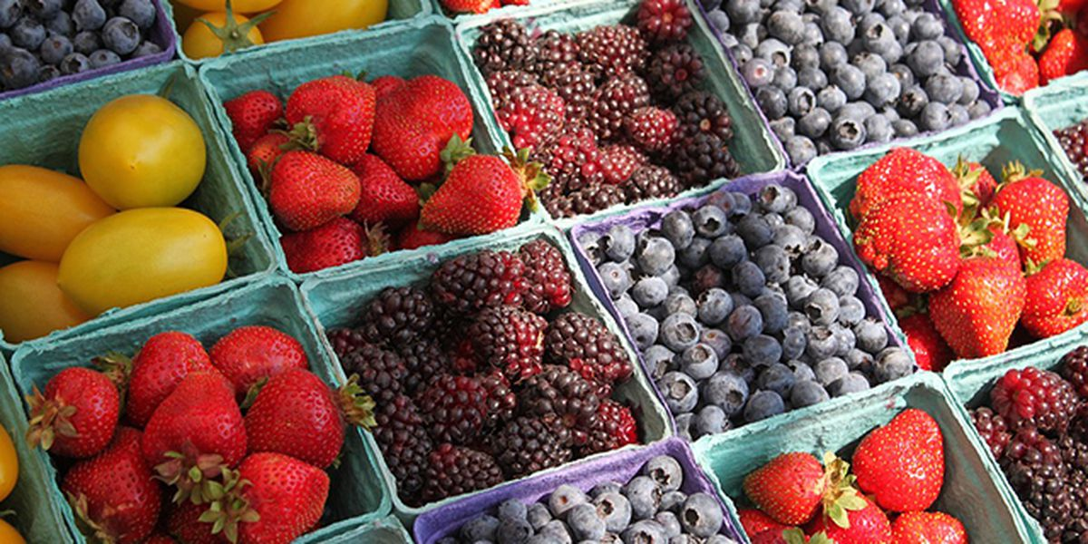 Guide to Central Florida Farmers Markets