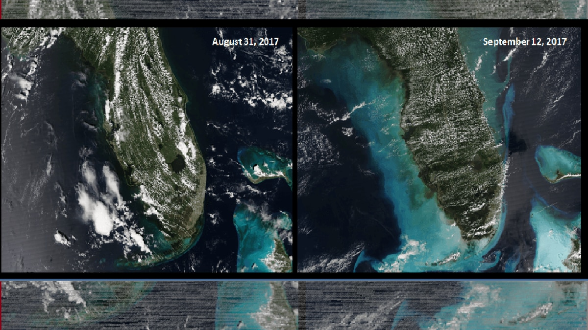 Take look at before, after effects of sea floor following Hurricane Irma near Florida