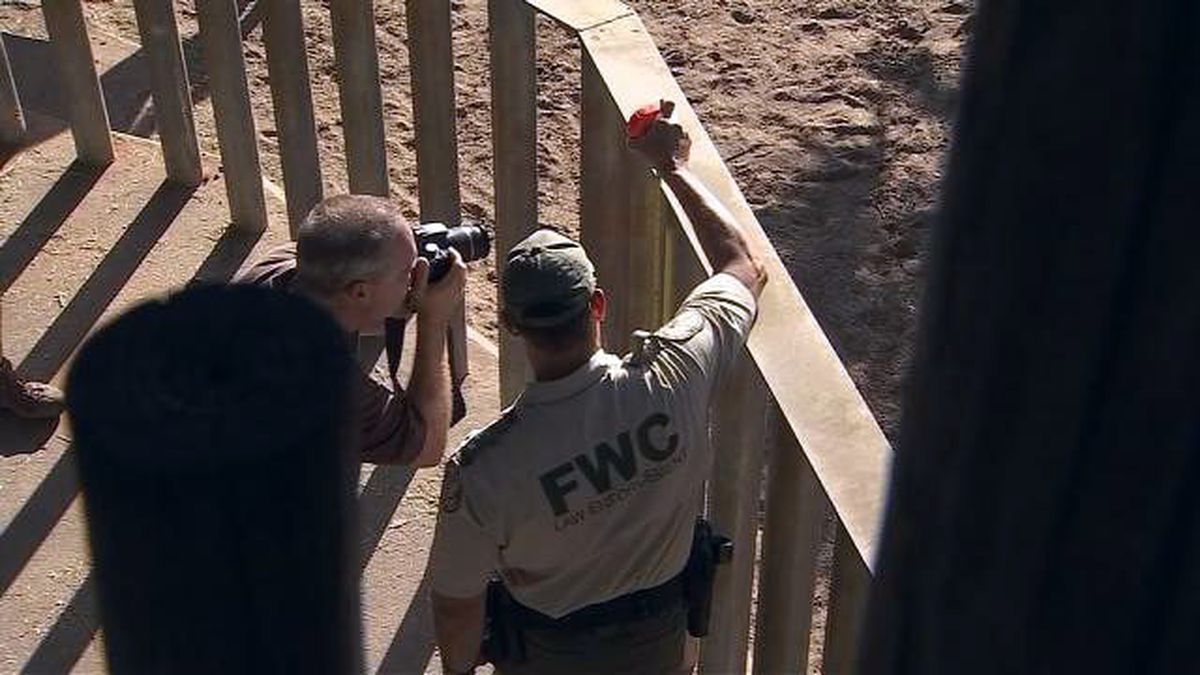2-year-old girl released from hospital after falling into rhino exhibit on New Year's Day
