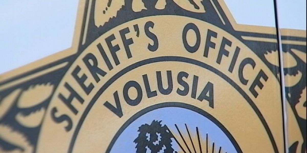 Dog shot, killed after threatening passerby in DeBary, report says