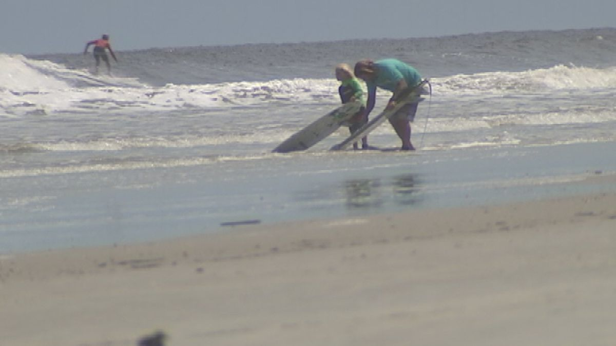 Shark While Surfing On New Smyrna Beach