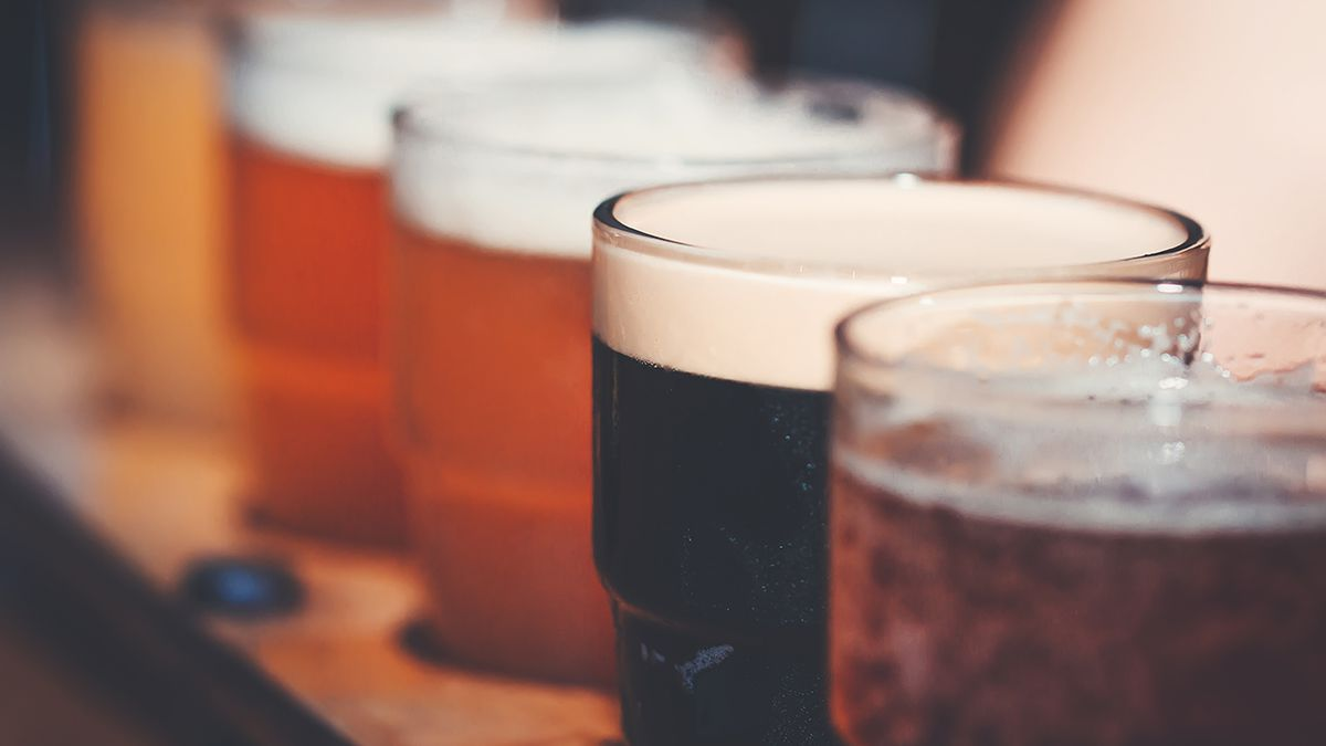 Is beer good for you? Some have 'very healthy,' gut-friendly bacteria, scientist says