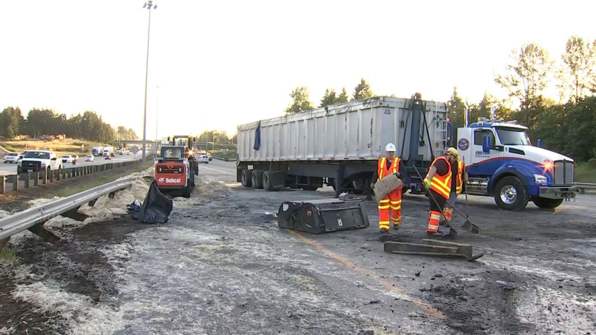 40,000 pounds of chicken feathers blocks freeway in Washington