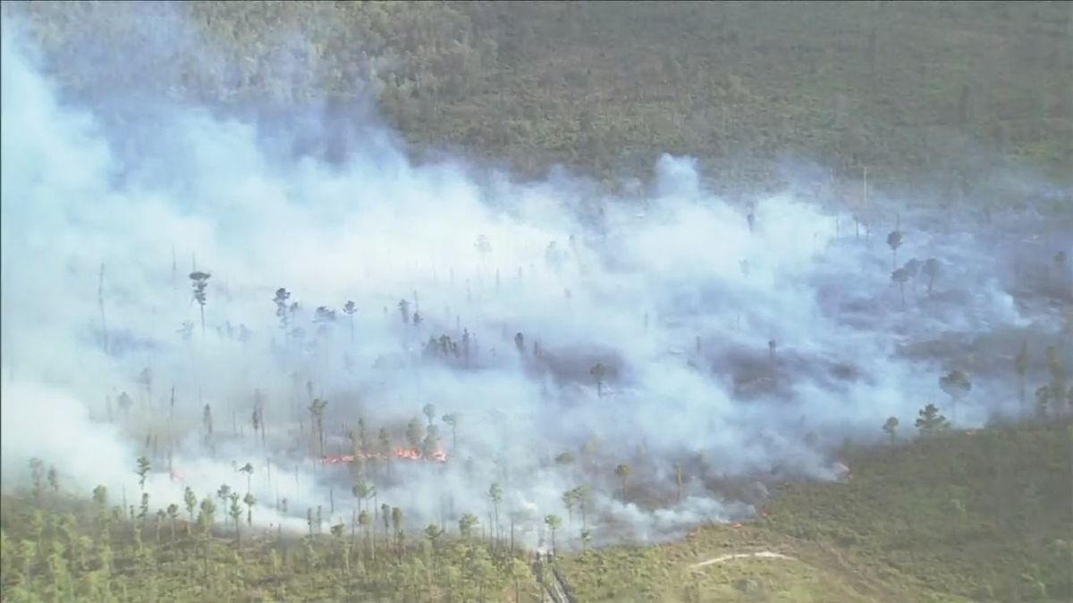 Update: 90% of brush fire near I-Drive contained, crews say