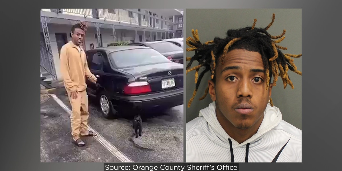 Man seen flinging cat by tail in social media video arrested on animal cruelty charge, deputies say