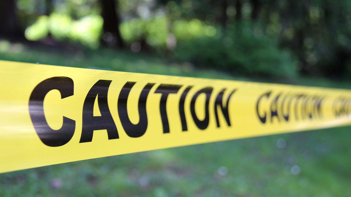 Murder-suicide: Ohio man kills wife, 3 kids, dog